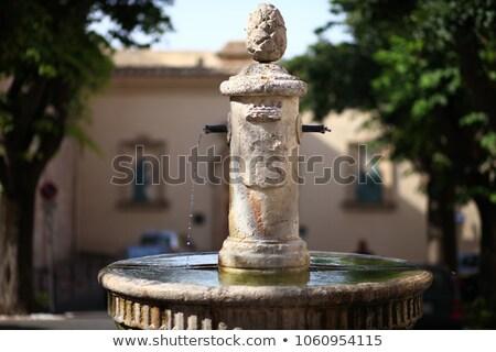 噴水 イタリア 市 センター 芸術 アーキテクチャ ストックフォト © borisb17