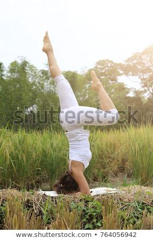 Woman on rice paddy in yoga pose Stock photo © Kzenon