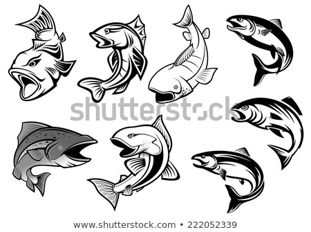 Trout Salmon Fish Mascot Cartoon Set Stock photo © patrimonio