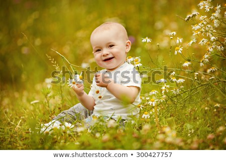 Stockfoto: Small Charming Toddler Boy In A Field With Daisies In The Summer And Smiles