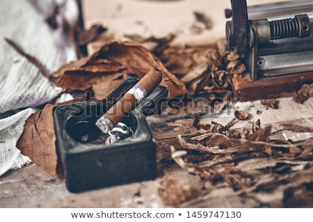Smoking cigar in an ashtray  Stock photo © inxti