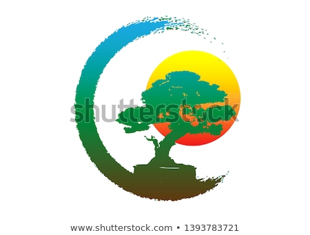 Japanese bonsai tree  Stock photo © mayboro