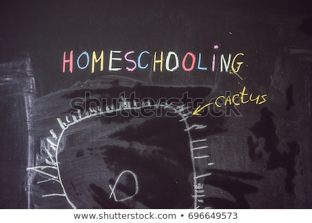 Homeschooling. The boy is drawing under word Homeschooling on a blackboard Stock photo © galitskaya