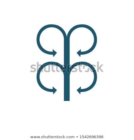 Vier cirkel tegenover pijlen voorraad geïsoleerd Stockfoto © kyryloff