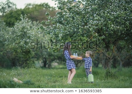 Kinderen broer ouder zus picknick tuin Stockfoto © ElenaBatkova