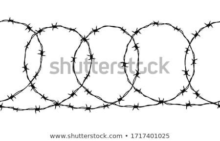 бесшовный границе подробный черный колючую проволоку белый Сток-фото © evgeny89