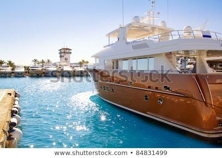 luxus · sziget · víz · fa · tenger · nyár - stock fotó © lunamarina