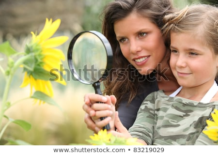 Young mum and daughter looking at a sunflower through a magnifying glass Stock photo © photography33