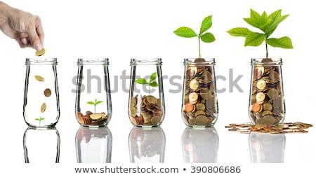 gouden · munten · groei · business · geld · succes - stockfoto © baur