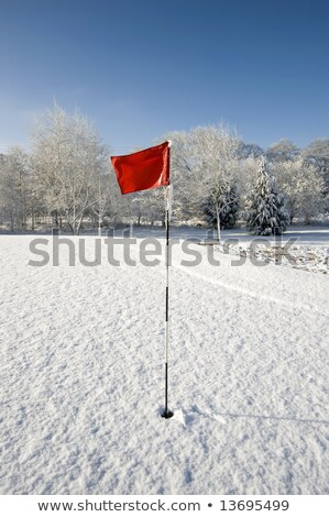 Red Golf Flag in the Snow stock photo © chris2766