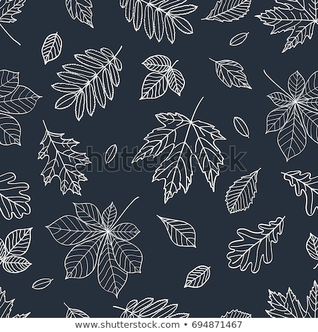 Сток-фото: шаблон · текстуры · аннотация · природы