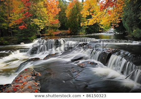 Fall Colors in the Midwest Stock photo © wildnerdpix