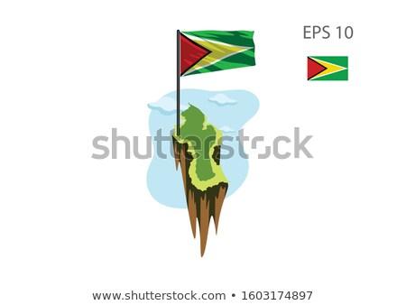 Miniatűr zászló Guyana izolált vágási körvonal megbeszélés Stock fotó © bosphorus