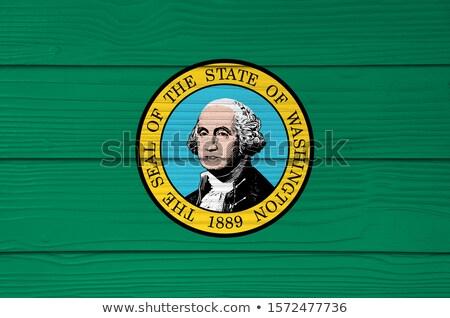 bandera · Washington · grunge · textura · pintado - foto stock © vepar5