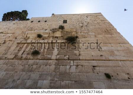 great · wall · Cina · pietra · mattone · cinese · Asia - foto d'archivio © tab62