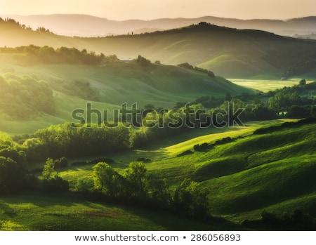 Házak zöld tájkép felhők természet háttér Stock fotó © zzve
