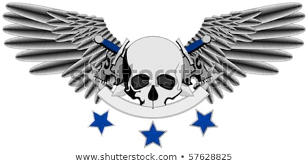Winged Human Skull logo with swords Stock photo © Miloushek