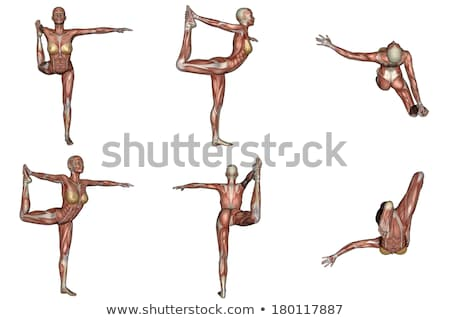 Danseur pose de yoga femme muscle visible six Photo stock © Elenarts
