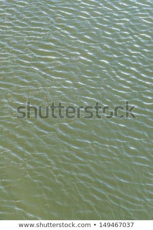 Vento harmônico padrão de onda rio lago Foto stock © meinzahn