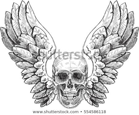 Winged Human Skull logo Stock photo © Miloushek