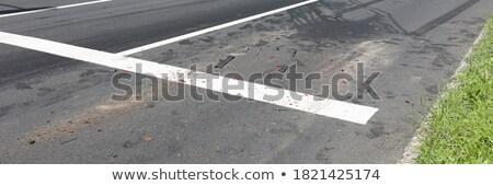voetganger · teken · geïsoleerd · witte · Blauw · snelweg - stockfoto © stevanovicigor