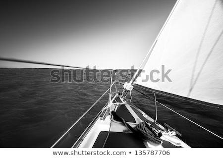 Scheepvaart zwart wit gestileerde illustratie logistiek vervoer Stockfoto © tracer