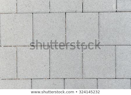 Grey Figured Pavement Slabs. Stock photo © tashatuvango