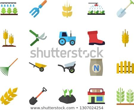 лопатой грабли икона саду фермы садоводства Сток-фото © Anna_leni