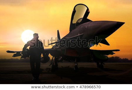 Attacking Fighter Aircraft Stock photo © Bigalbaloo