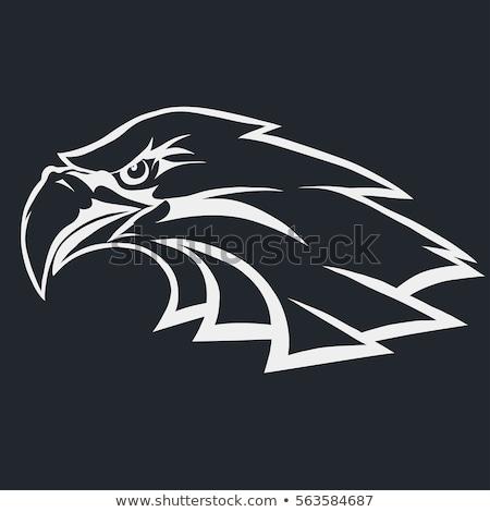 орел лице силуэта иллюстрация аннотация Сток-фото © silverrose1