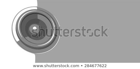 иллюстрация вечеринка Flyer серый дискотеку оратора Сток-фото © Melvin07
