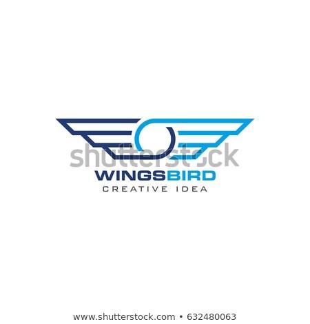 Stockfoto: Vogels · creatieve · vleugels · voorjaar · liefde · abstract