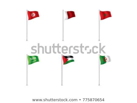Émirats arabes unis Tunisie drapeaux puzzle isolé blanche Photo stock © Istanbul2009