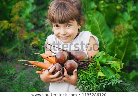 Photo stock: Girl With A Bunch Of Leaves