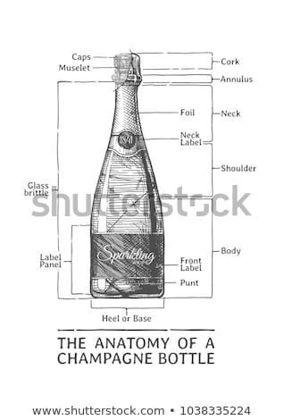 abrir · vazio · champanhe · garrafa · cortiça · isolado - foto stock © bsani
