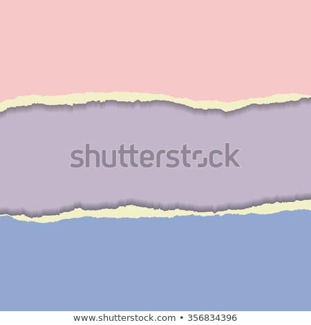 fehér · papír · perem · kettő · darabok · szakadt - stock fotó © gladiolus
