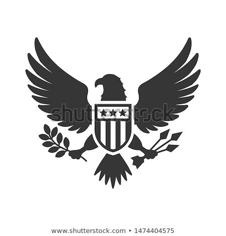 rojo · blanco · azul · escudo · estrellas - foto stock © fenton