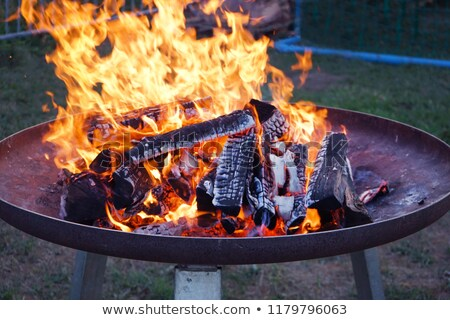 feu · brûlant · bois · rouge · flammes · chaud - photo stock © barbaraneveu