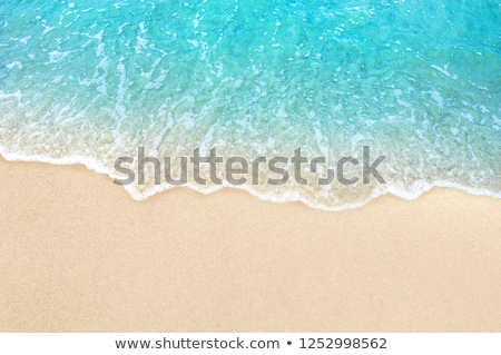 blue sea and the sandy beach Stock photo © OleksandrO