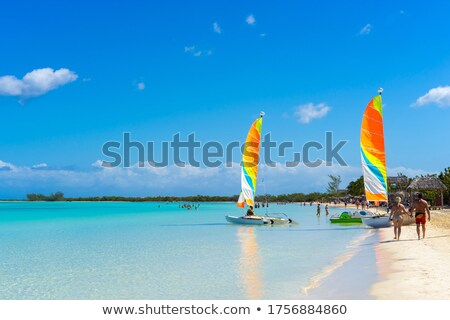 View from above to a busy beach. Coast of the Atlantic Ocean Stock photo © vlad_star