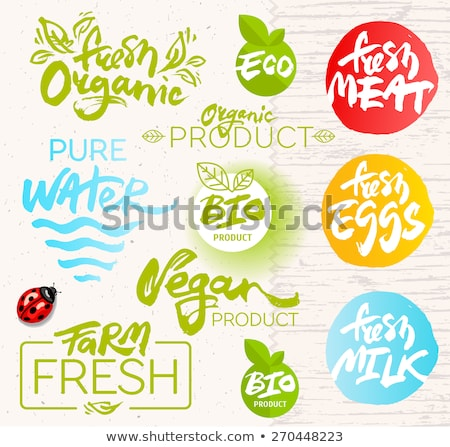 Meat vector frame with logo. Fresh meat icon Stock photo © MarySan