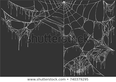 Large white torn spider web on black background. Halloween Scenery Stock photo © orensila