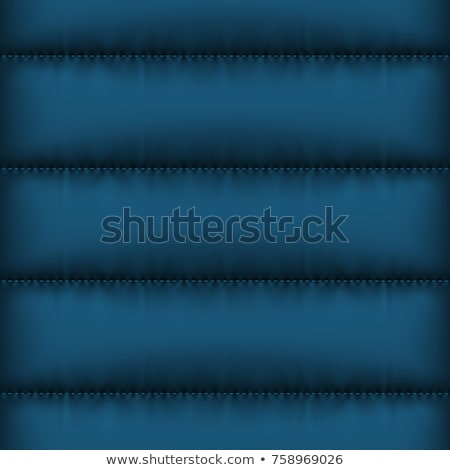Winter nach unten Jacke blau Vektor Stock foto © Iaroslava