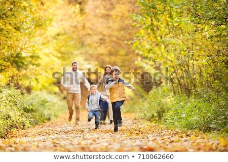 Familie Herbst Park glückliche Familie Mutter wenig Stock foto © wildman
