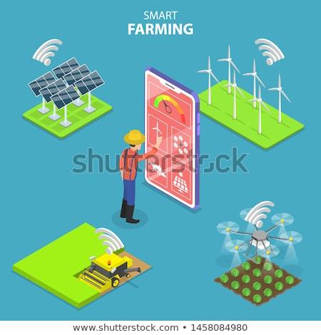 Természetes gazdálkodás izometrikus 3D szalag mezőgazdasági Stock fotó © studioworkstock