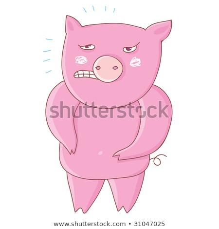 свинья · поросенок · животного · характер · Cartoon · иллюстрация - Сток-фото © orensila