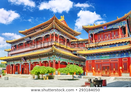 Lion statue, Lama Temple, Beijing, China Stock photo © IS2
