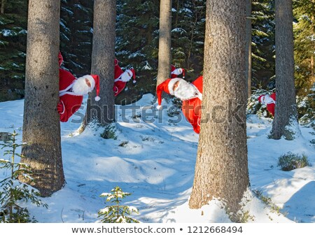 Man peeking from behind a tree in forest Stock photo © IS2
