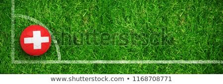 piłka · nożna · piłka · nożna · świeże · zielone · sportu · charakter - zdjęcia stock © wavebreak_media