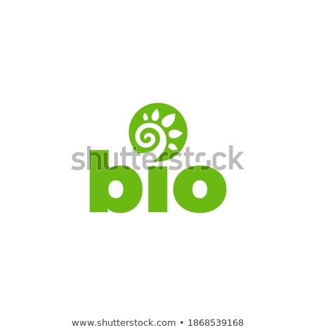 Spiralis bio círculo planta ecologia verde Foto stock © blaskorizov